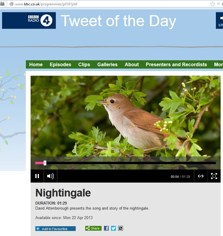 Nightingale tweet