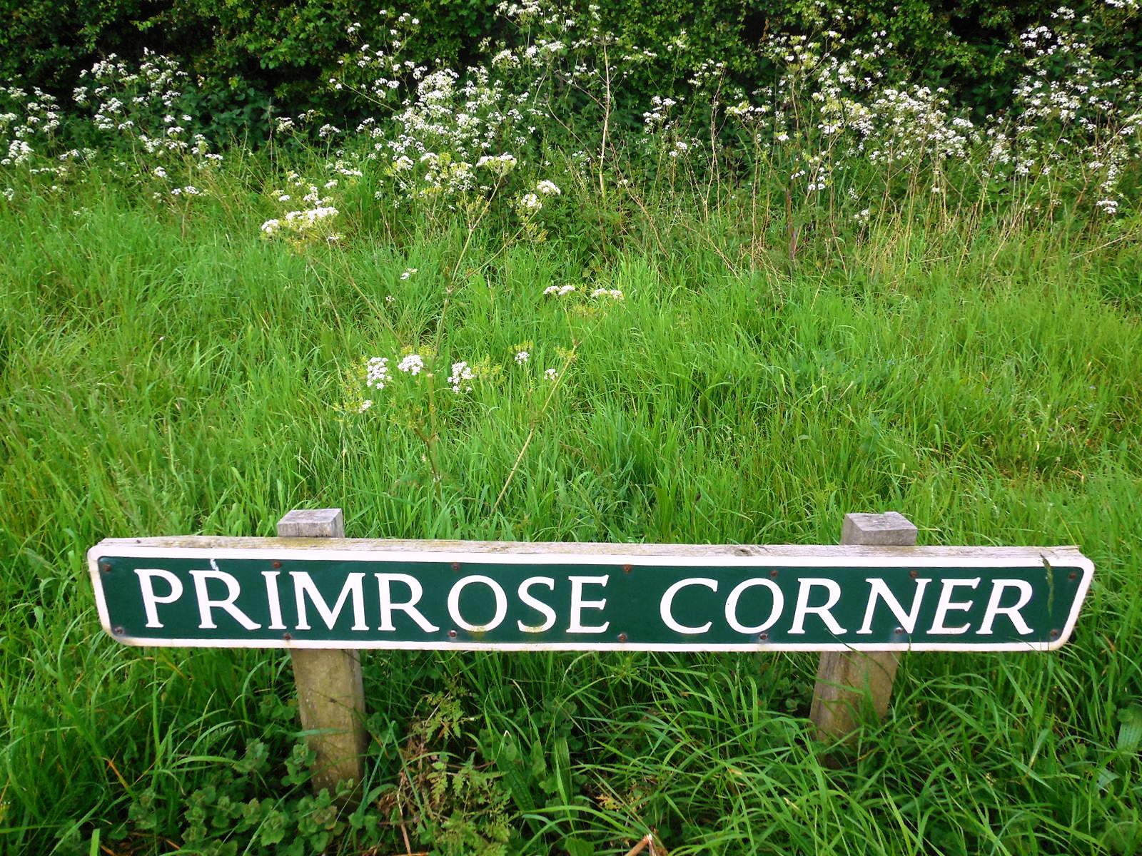 Prim corner 3