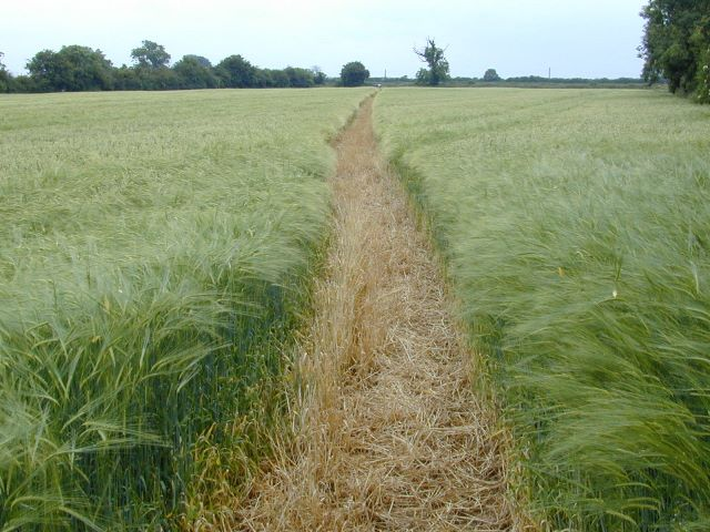 wendlebury converted to barley ed s