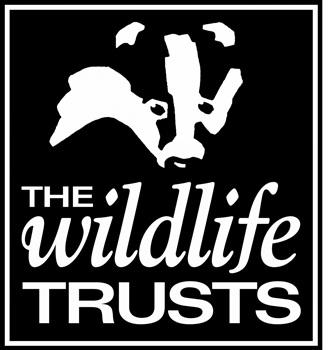 WTrusts logo